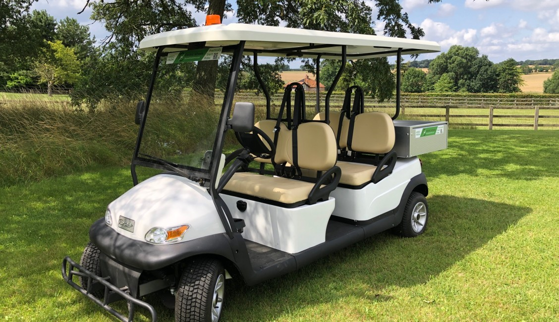 Golf Buggy x 4 person